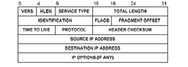 IP datagram